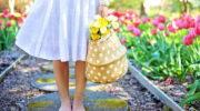 Как правильно поливать садовые цветы, чтобы лучше цвели