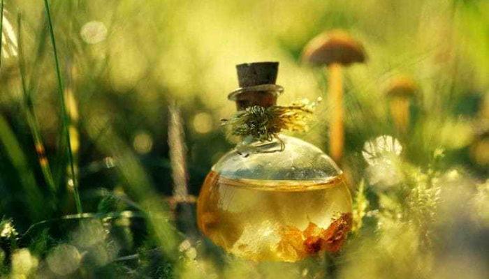 Необычное применение касторового масла в доме: 6 способов