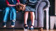 Домашние животные не вызывающие аллергию: питомцы для аллергиков