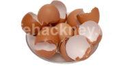 Применение яичной скорлупы: полезные свойства