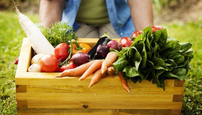 5 полезных продуктов в рационе при сахарном диабете