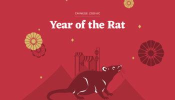 Какие знаки будут особенно удачливы в год крысы?