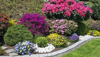 Какие ограждения для декоративных растений я использую на дачном участке: просто, красиво и очень удобно