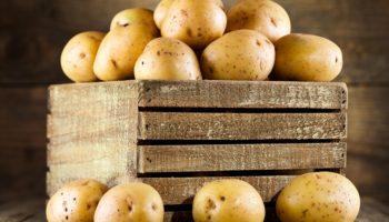 Увеличиваем урожай картофеля в период бутонизации