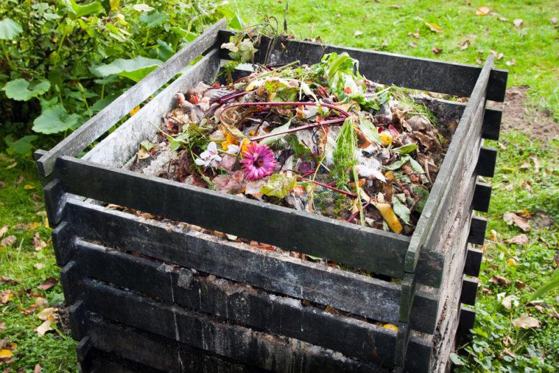 Из бесполезного делаем драгоценное: как переработать растительные остатки на компост