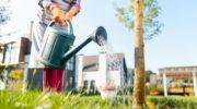 Как сделать обычный сад сказочно красивым местом — несколько простых и интересных идей