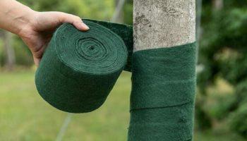 Как защитить сад от неблагоприятных условий и грызунов — рассказываю о самых востребованных материалах для оборачивания стволов деревьев