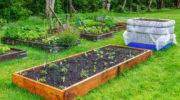 Садово-огородные новации: нестандартная «начинка» для высоких грядок и стандарты их формирования
