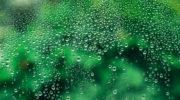 Конденсат на окнах — неприятное явление. Как справиться с проблемой и какие причины ее появления следует устранить