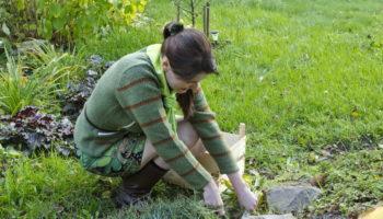 Как легко и быстро избавиться от сорняков — интересный метод из народной копилки